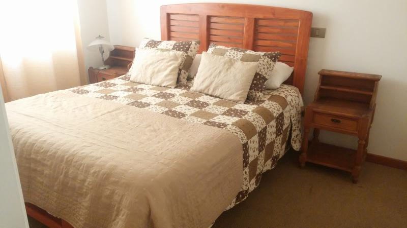 Beautiful-Cozy apartment 2 BR - 2 BA, alquiler vacacional en Viña del Mar