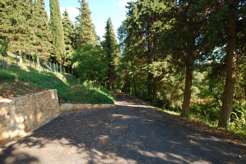 Road to the villa and parking