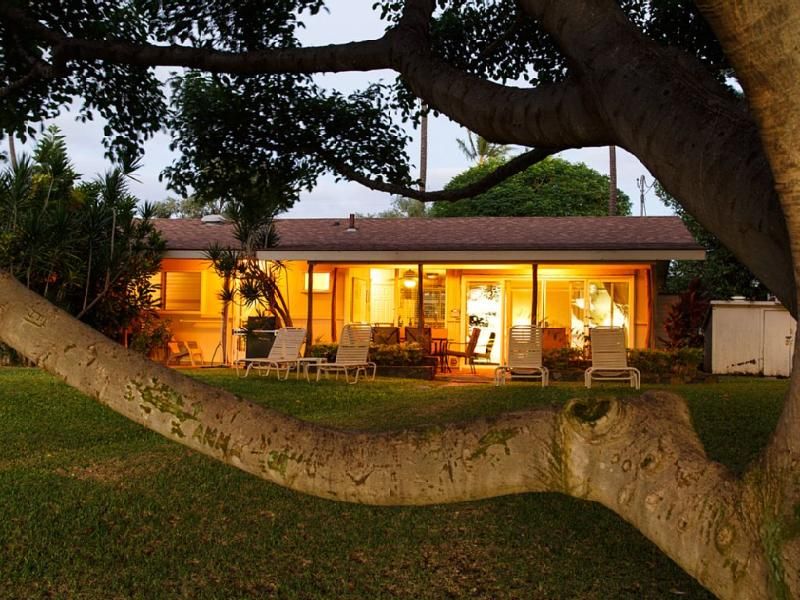 Here is your Hawaiian Cottage! 100+ yr old Banyan frames this 60's beauty!