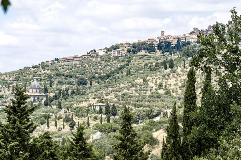 View of Cortona from the garden