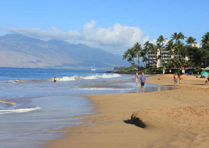 Beautiful Kamaole II Beach across the street just a five min. walk from lanai..