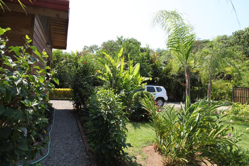 house side, garden