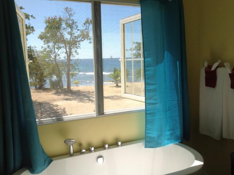 Breath-taking view from master bathroom with soaking tub and shower with jets