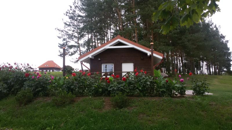 Cosy cabin by the lake with sauna, location de vacances à Anyksciai