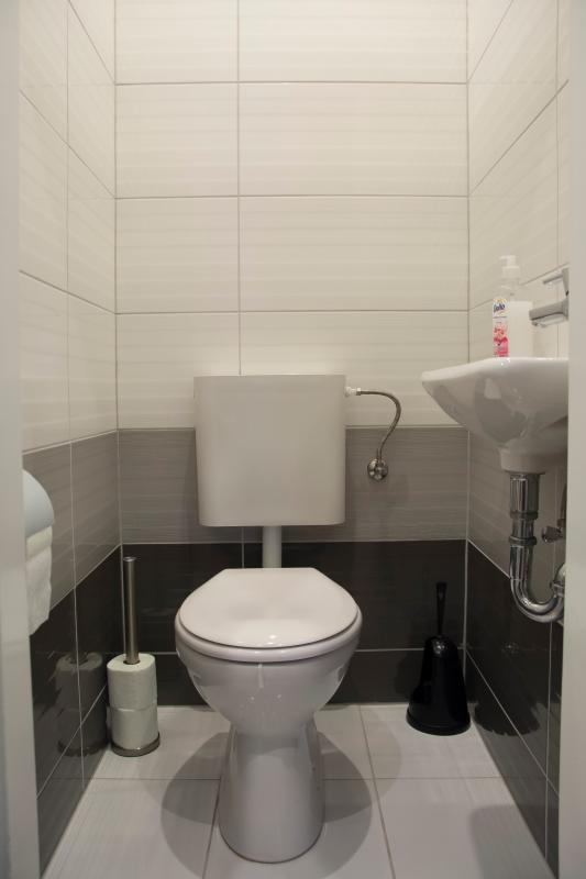 separarte toilet 2