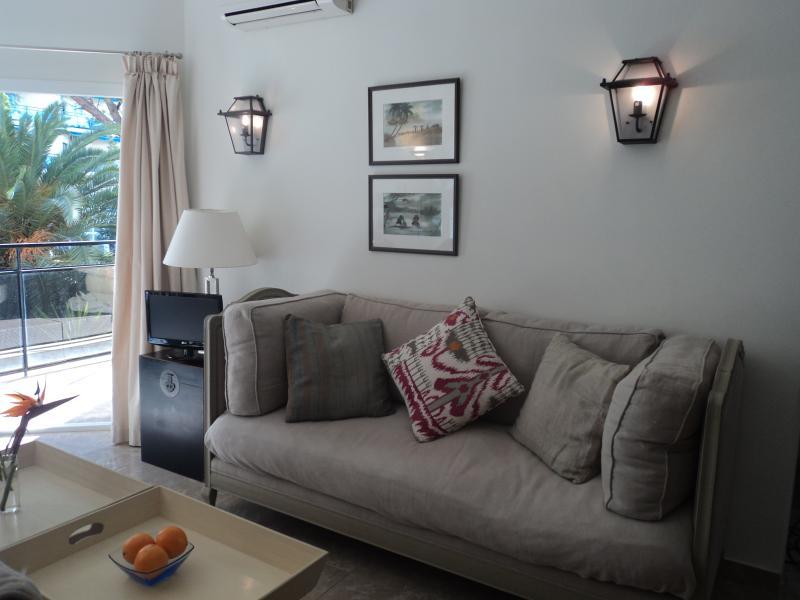 Apartment 222c living room