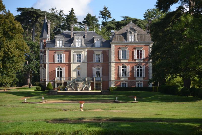 Loire Valley holiday chateau (pool, tennis, horse), vacation rental in Segre-en-Anjou Bleu