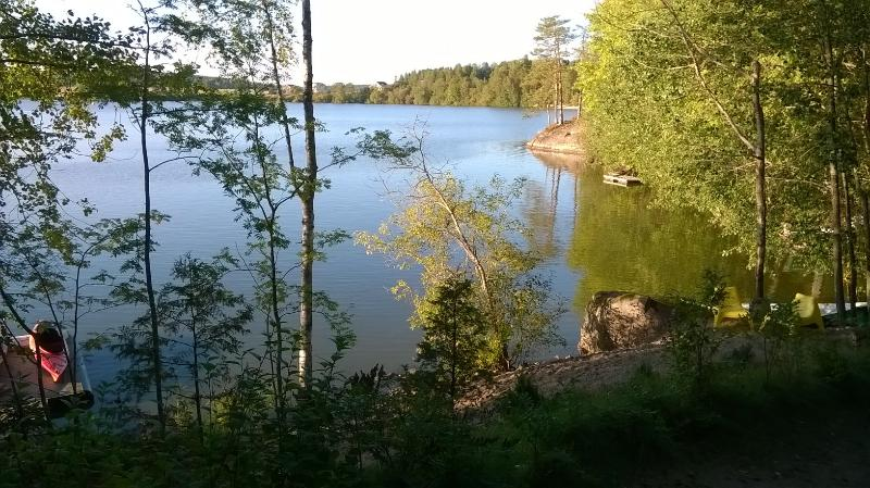 Our sandy beach in the summer evening and some blueberry bushes.