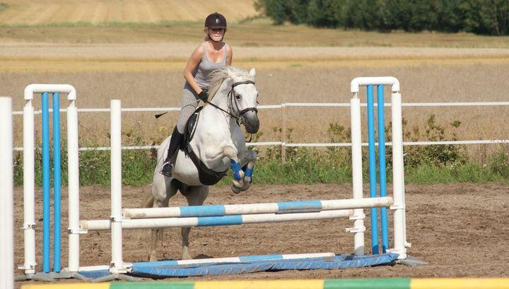 We can arrange horse/pony riding
