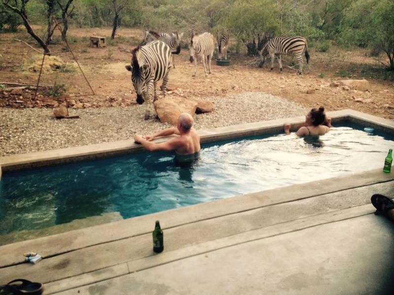 Nextdoor Kruger Lodge, alquiler de vacaciones en Mpumalanga