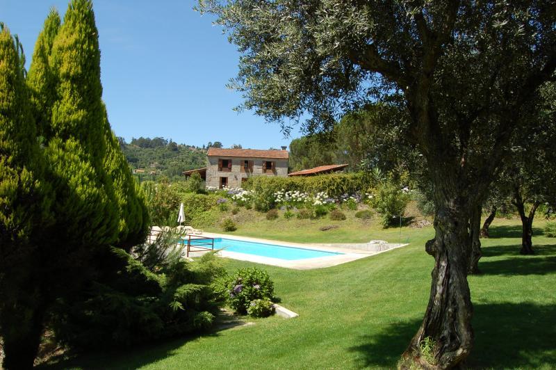 pool & house 2