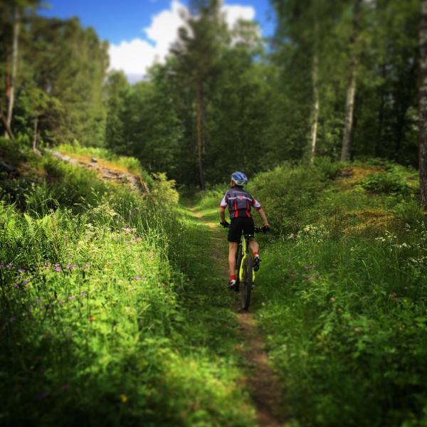 22 underbara mountainbikeleder utanför husknuten. Skyltade och i fyra svårighetsgrader. Kartor finns