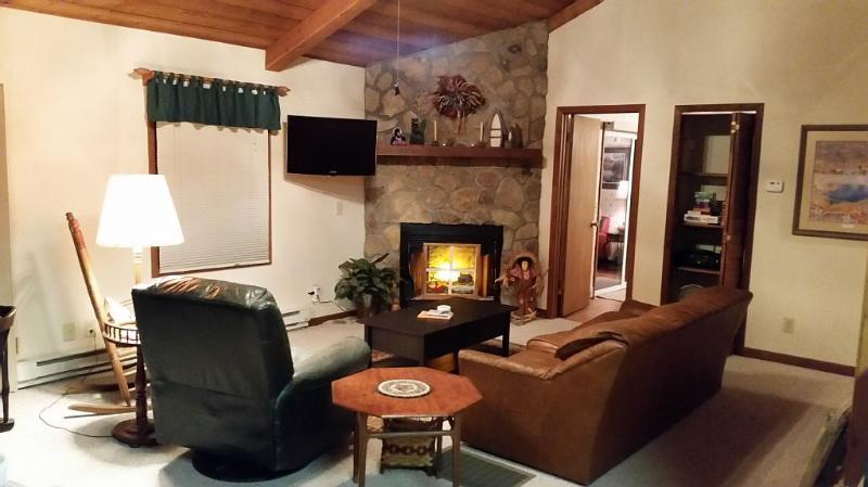 Cabin Great Room includes game closet is situated between two Master Bedrooms
