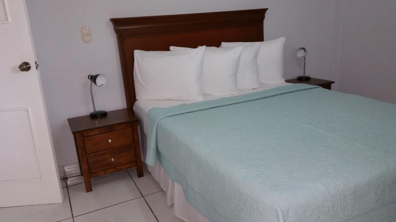 1 Queen bed in main room