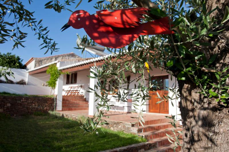 House in Alentejo with Swimming Pool, holiday rental in Minas de Sao Domingos