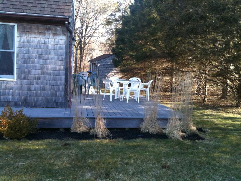 side deck - shed in backround
