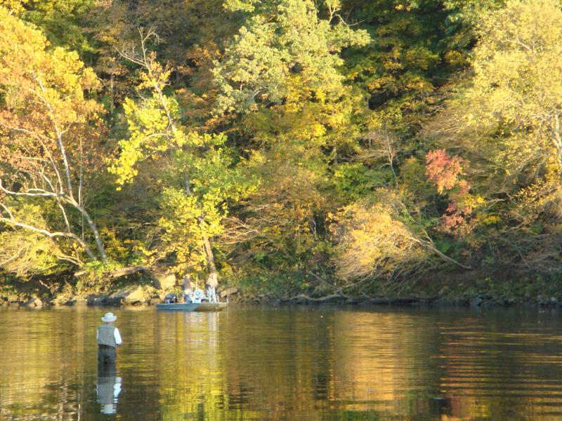 Lake Taneycomo  below the condo. Easy access to great fishing