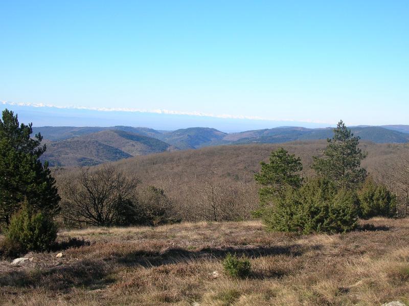 Point de vue avec la chaine des Pyrénées enneigée