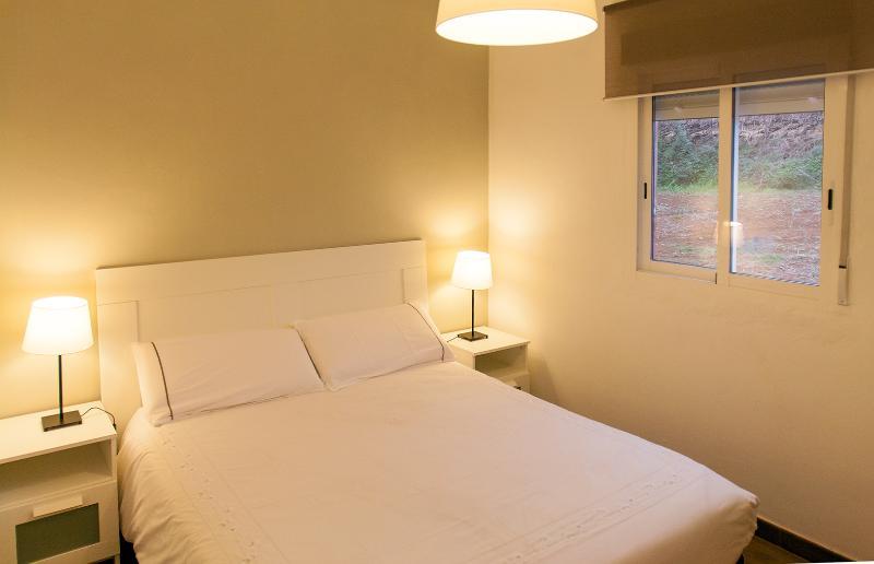 Elegant apartment with terrace & vineyards, vacation rental in La Orotava