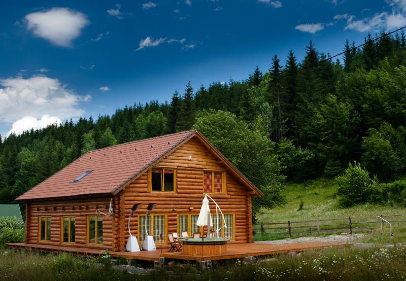 Magical log cabin in Dracula land!, vacation rental in Izvoare