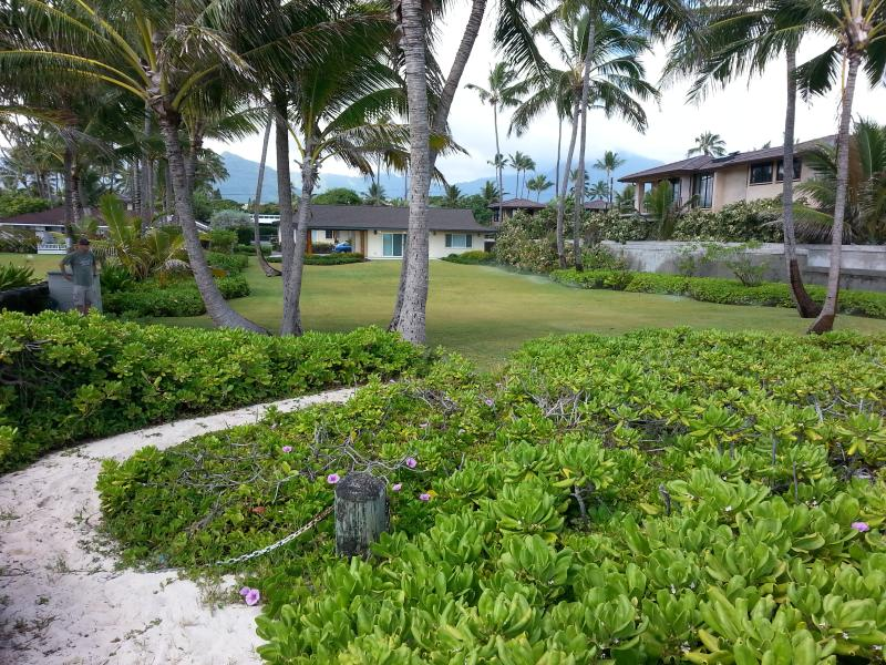 View from the beach pathway to your yard and the house beyond.