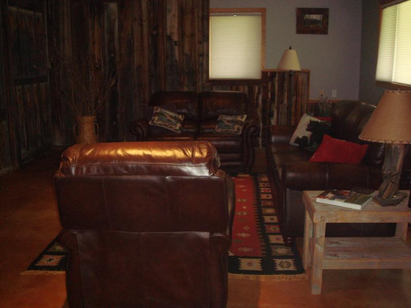 living room with satellite TV, DVD, books & games