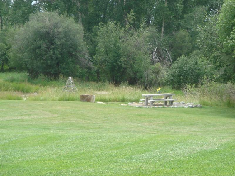 large yard, with picnic table out by pond