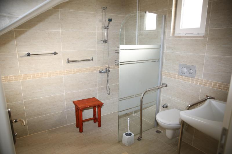 Downstairs bathroom, with facilities for people with limited mobility.
