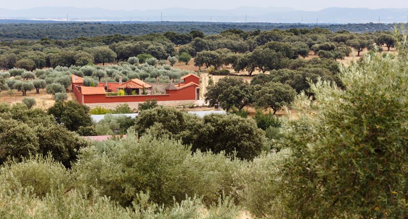 Complejo Rural atípico lujo 4 pax Sur de Gredos, alquiler vacacional en Provincia de Toledo