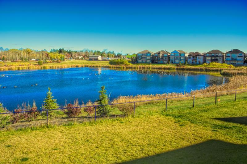 Backyard Lake