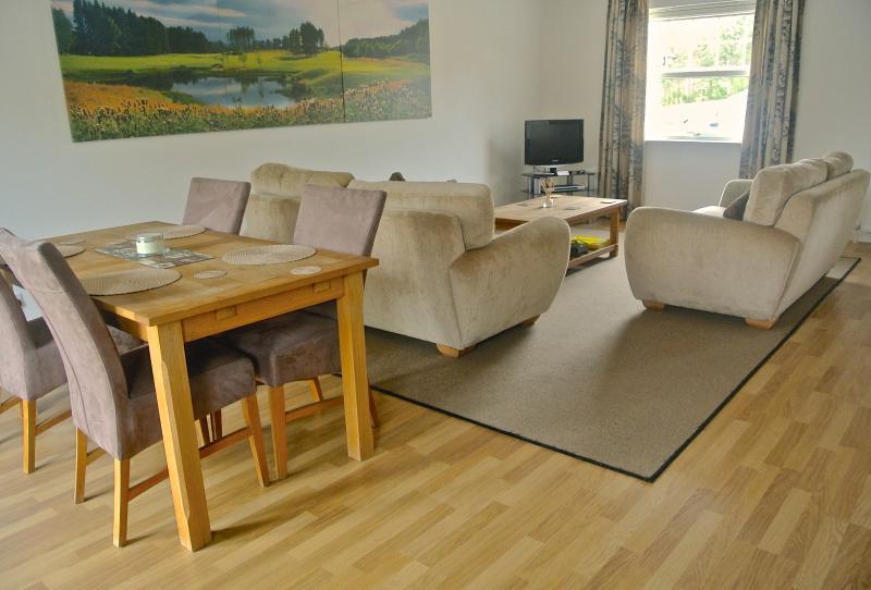Modern Open Plan Living/Dining area