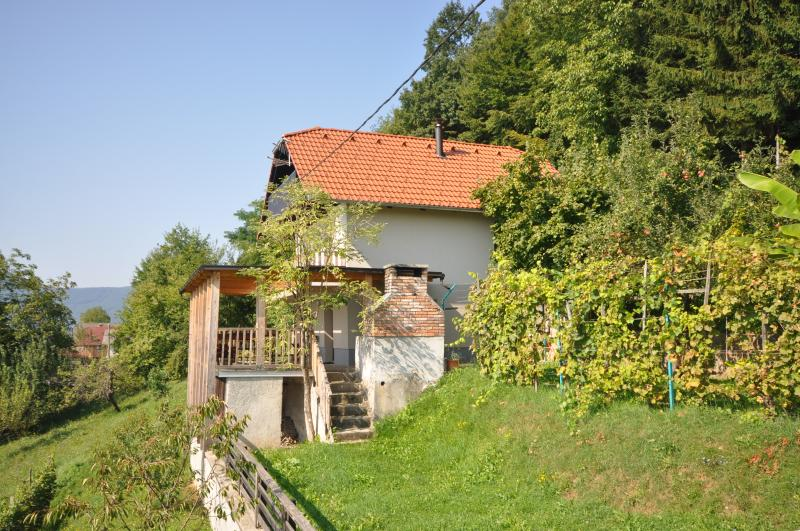 Vineyard cottage - Zidanica Krstinc, holiday rental in Lower Carniola Region