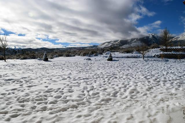 Large backyard in winter