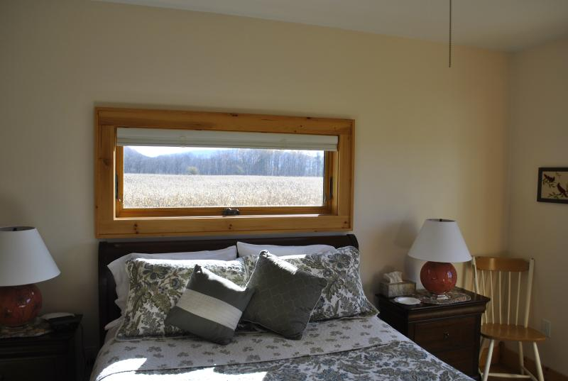 The Master Bedroom is the only first floor bedroom and has an ensuite spa bath.