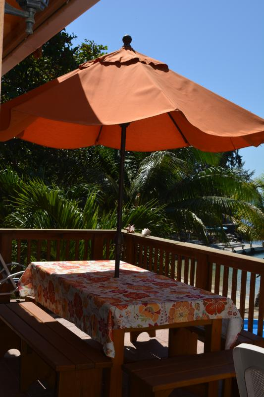 Picnic table on Main level Patio with nice umbrella to keep the beating sun away