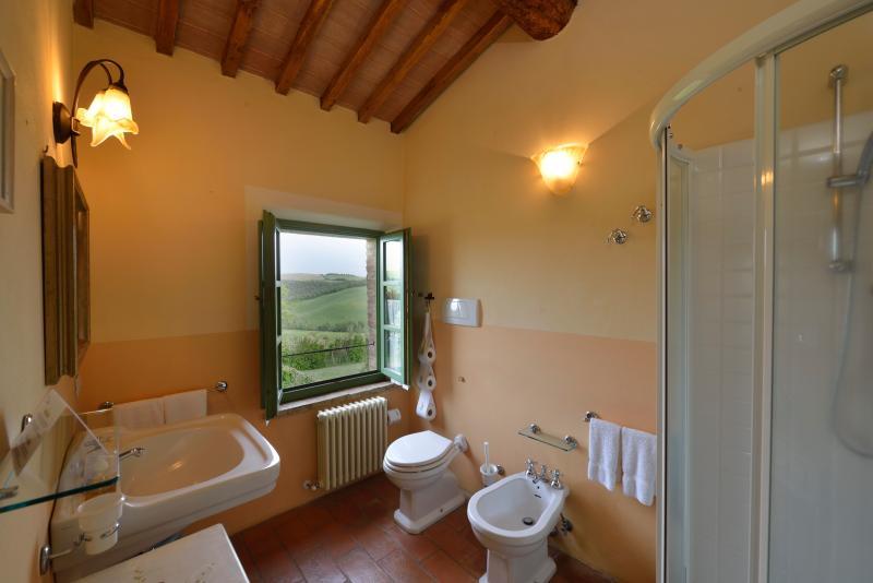 il bagno privato, molto confortevole, con doccia ad angolo e una bella vista :)