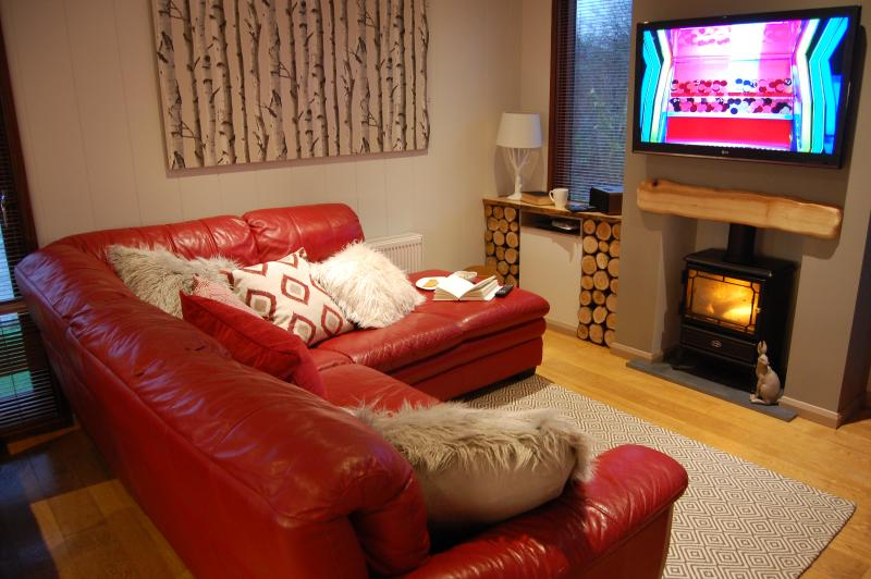 Cosy lounge with wall mounted TV and flame effect wood burner stove