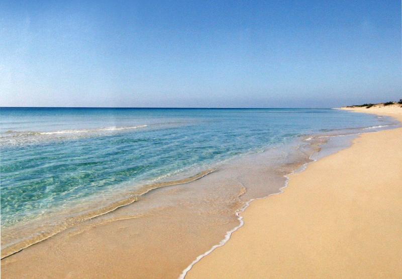B&B brezza marina (conchiglia, 30 metri dal mare), holiday rental in Torre Pali