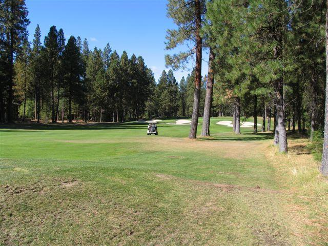 15th hole of the Big meadow golf course right out the back door!