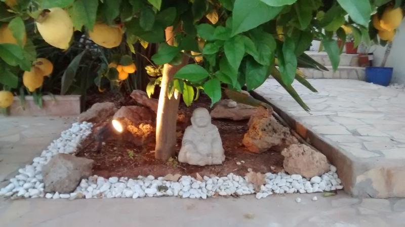 giardini ben illuminati garantiscono a rilassarsi durante la notte