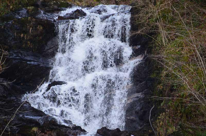 Waterfall at David Marshall Lodge