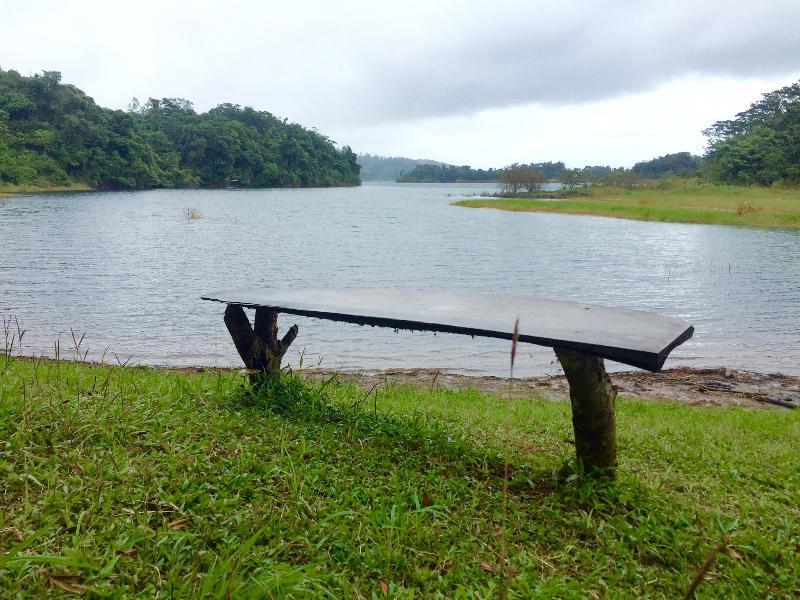 Feel like just feeling nature? enjoy wooden bench, listen to the birds.