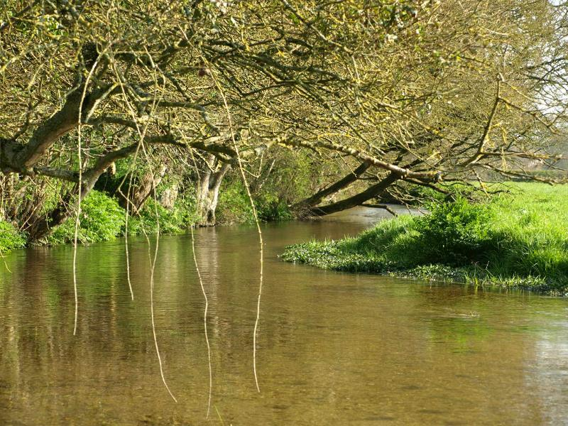 A peaceful spot watching the river flow through Damerham where the village Duck Race takes place.
