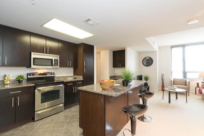 Amazing! Apartment in Arlington, holiday rental in Arlington
