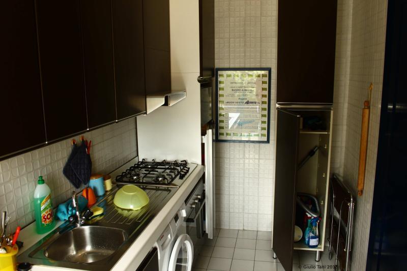 Kitchen with washing machine and fridge.