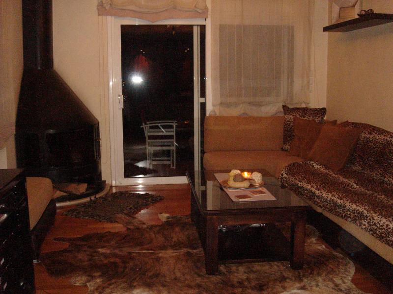 Living room -fireplace  SOFAS