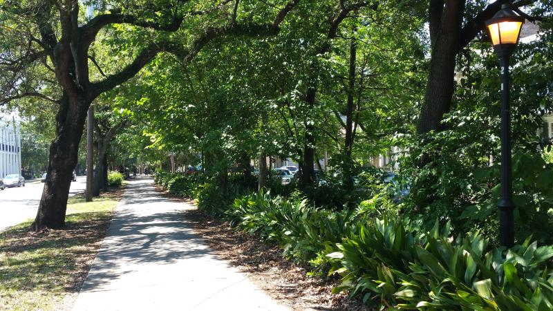 Our street, a walking park towards the French Quarter or to the Garden Distric