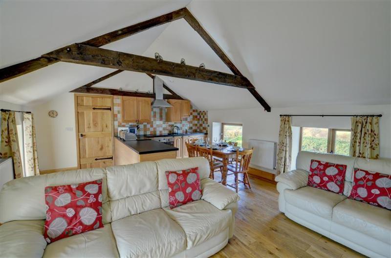 sofás de cuero y sillas en la sala de estar de esta atractiva sala de estar