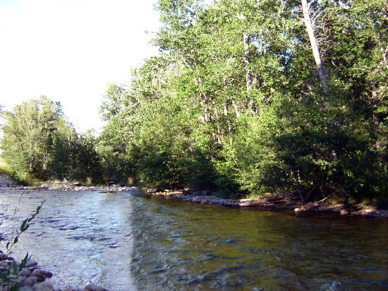 Famed Rocha Creek pesca, a apenas 2 quarteirões de distância!
