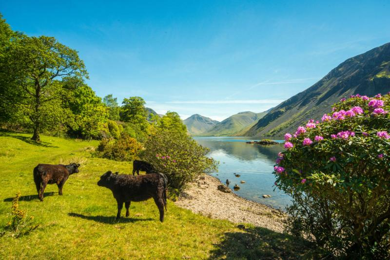 Wastwater, a short walk, England's deepest lake